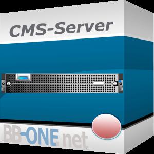 CMS-Hosting mit passenden Servern