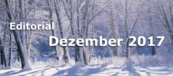 Editorial Internet Business Magazin Dezember 2017