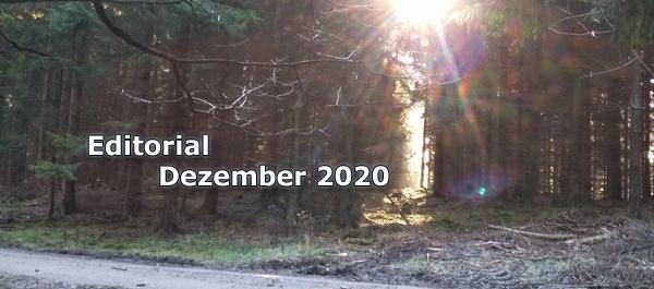 Editorial Dezember 2020 Internet Magazin Themenübersicht Rückblick und Vorschau